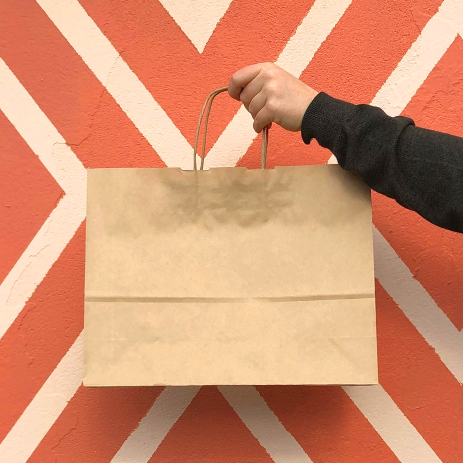 Person holding brown kraft paper bag.
