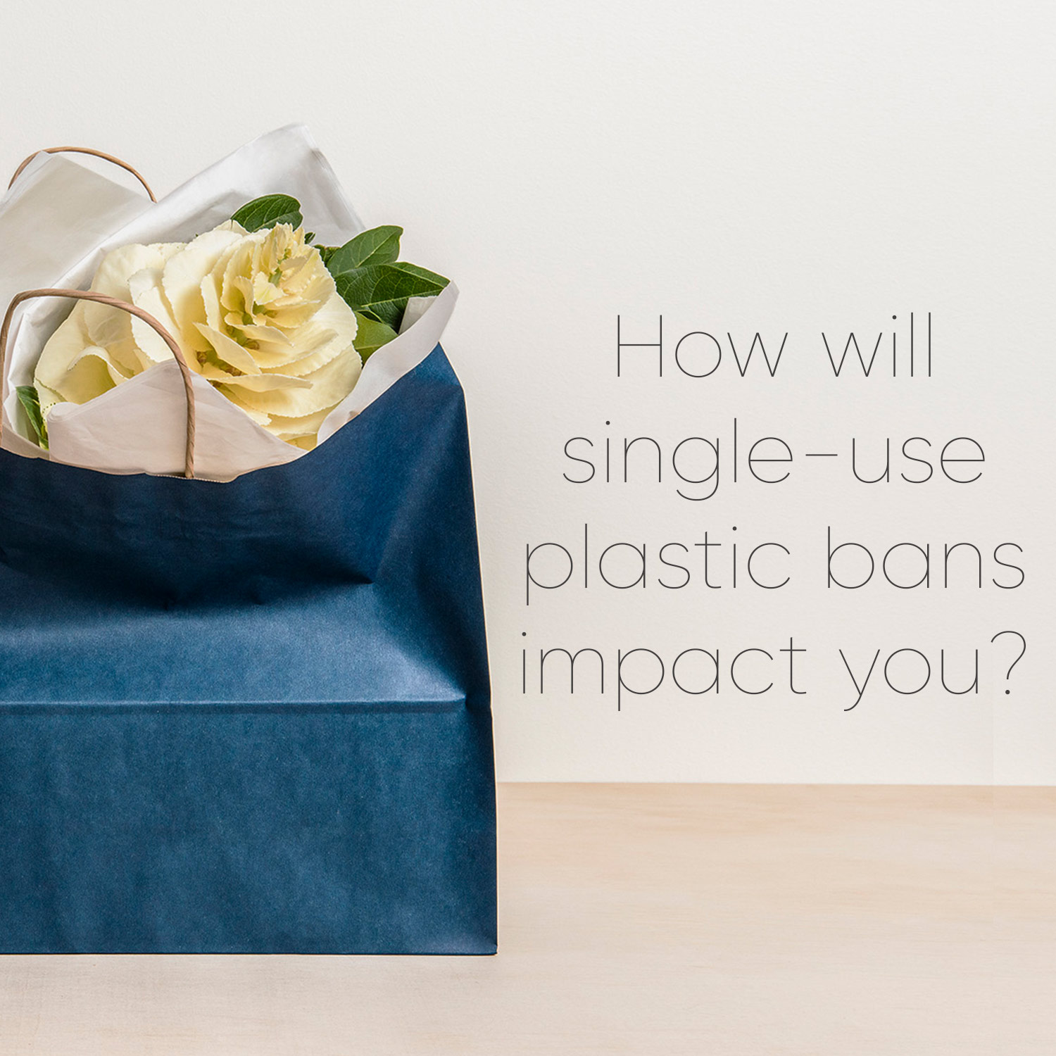 Image with text how will single use plastic bans impact you